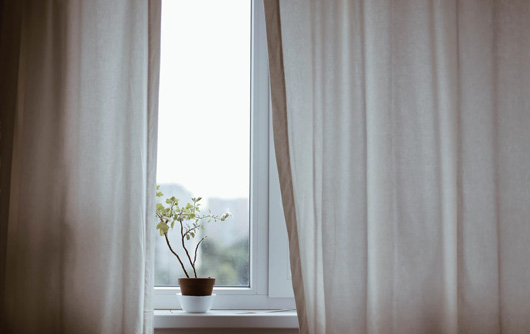 Hospital window with drapes half open and a flower on the sill