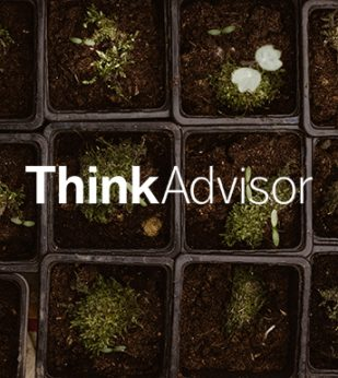 ThinkAdvisor logo over Mossy sprouts growing in small pots