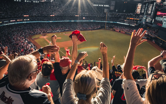Cheering fans at a baseball game