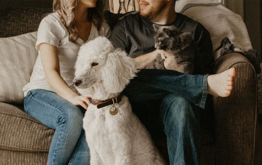 A couple sits on a couch with their cat and dog